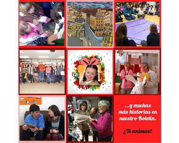 cabecera-boletin-noviembre