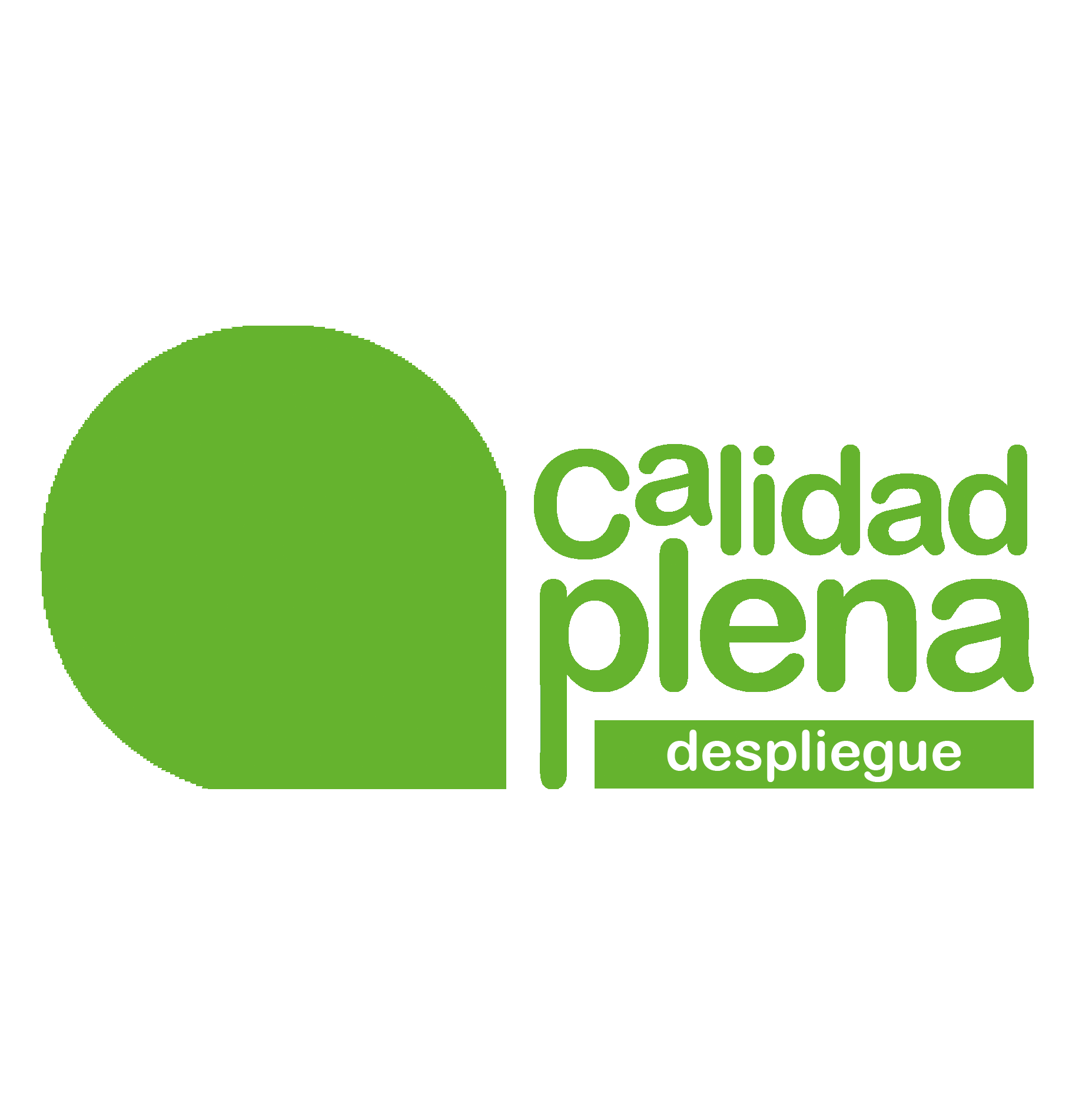 Despliegue web